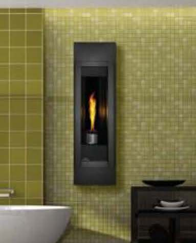 Napoleon Torch Rear Vent Fireplace | BBQ's, Grills, Fireplaces and ...